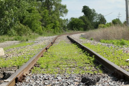 old_railroad_tracks_by_leonheart1292-d52hno6